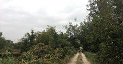 Eladó 2 utcára nyiló TELEK 2111 Szada, Dózsa György út és a Babföldi út (Budapest – Pest m.) #0355