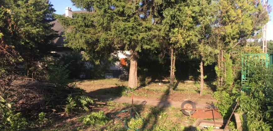 Eladó Faház Saroktelken 2113 Erdőkertes (Budapest-Pest m.) #14751