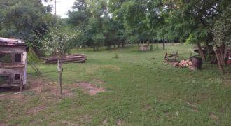 Eladó Tanya, Farm 4324 Kállósemjén (Szabolcs m.) Regisztrált Vevőinknek #22697