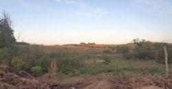 Eladó Major, Tanya, Farm 2870 Kisbér (Komárom-Esztergom m.) Regisztrált Vevőinknek #22917
